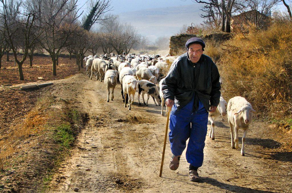 El último pastor